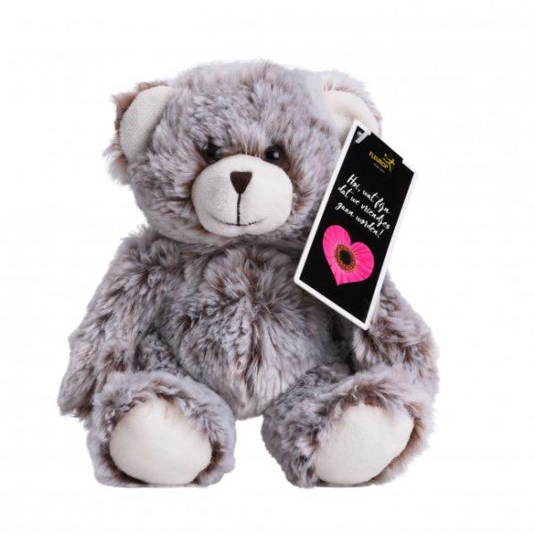 teddybeer, 10 cm hoog