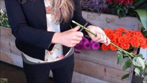 Bloemen altijd schuin afsnijden