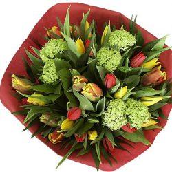 Bezrog een vrolijk tulpenboeket in Den Haag