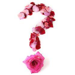 Keuze bloemist, laat ons het mooiste boeket samenstellen