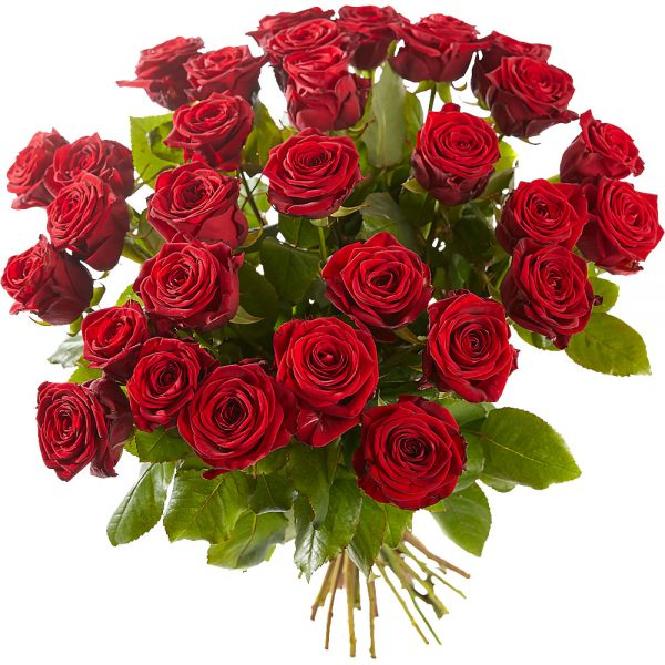 Bouquet of long stemmed red roses
