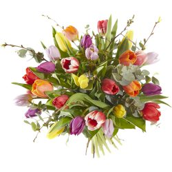 Colorful bouquet with tulips