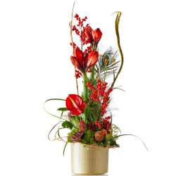Red christmas arrangement with Amaryllis